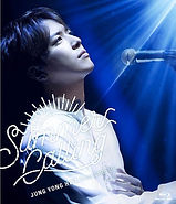 "JUNG YONG HWA JAPAN CONCERT 2017 ""Summer"