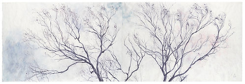 'Tree' Signed Limited Edition Print