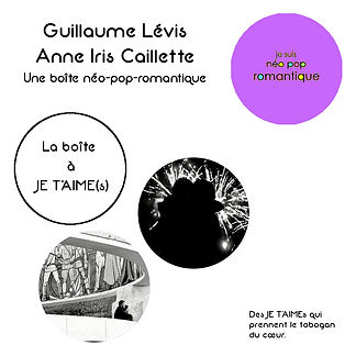 Mini fiche AIC Guillaume.JPG
