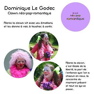 Mini fiche Dominique.JPg