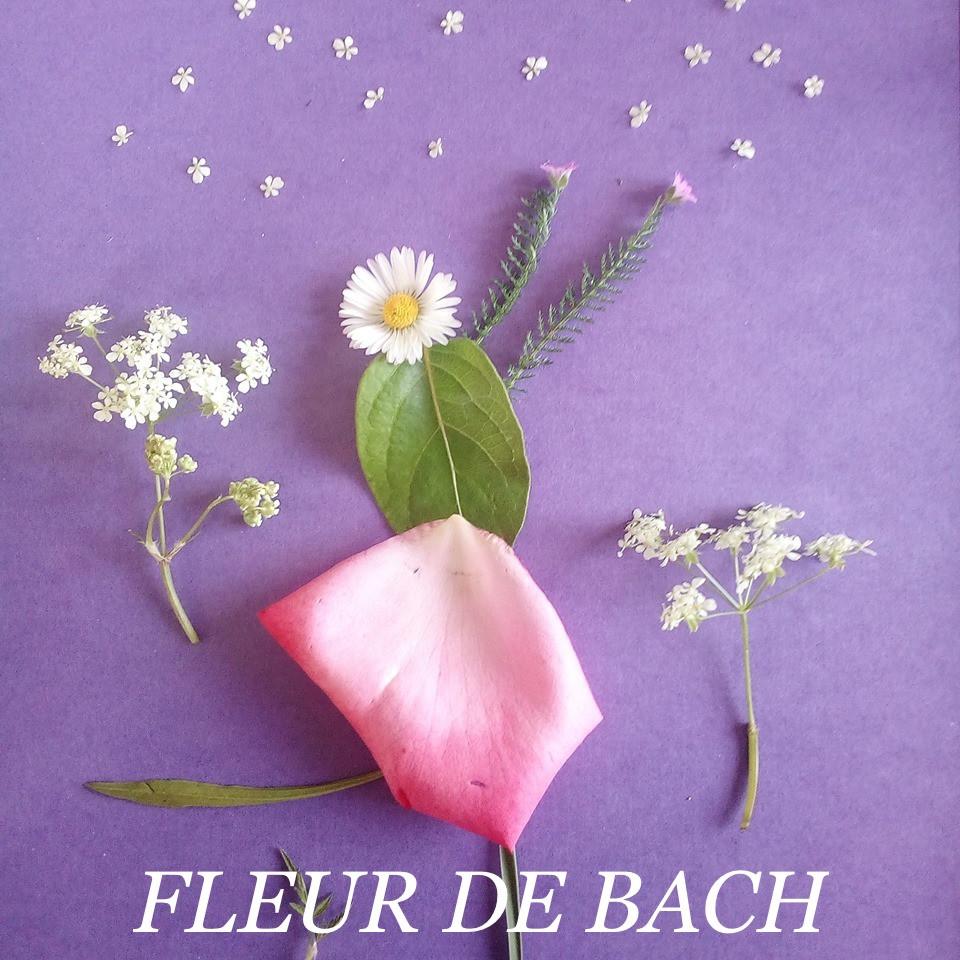 Mela Done Conseillere en fleur de bach.j