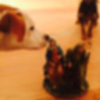 Doggies interested in M&J.jpg