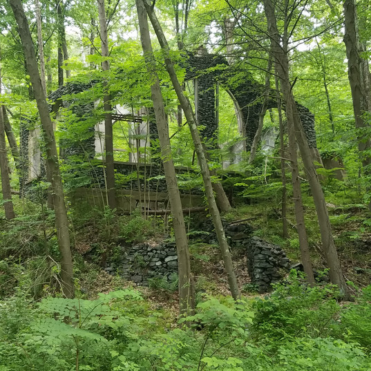 Sterling Forest ruins, covered in Summer!