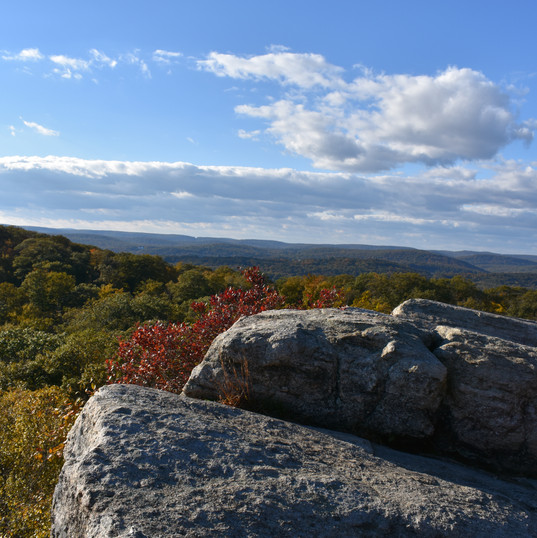 Harriman State Park Vistas never disappoint