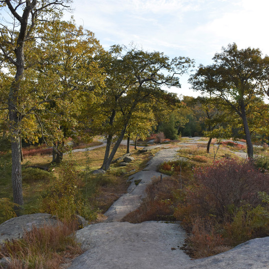 I adore these rock trails! And long Fall hikes!