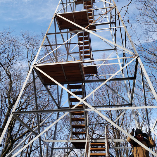 Conquer your fear of heights! This is one of three Fire Towers on local hikes - I love the added challenge!