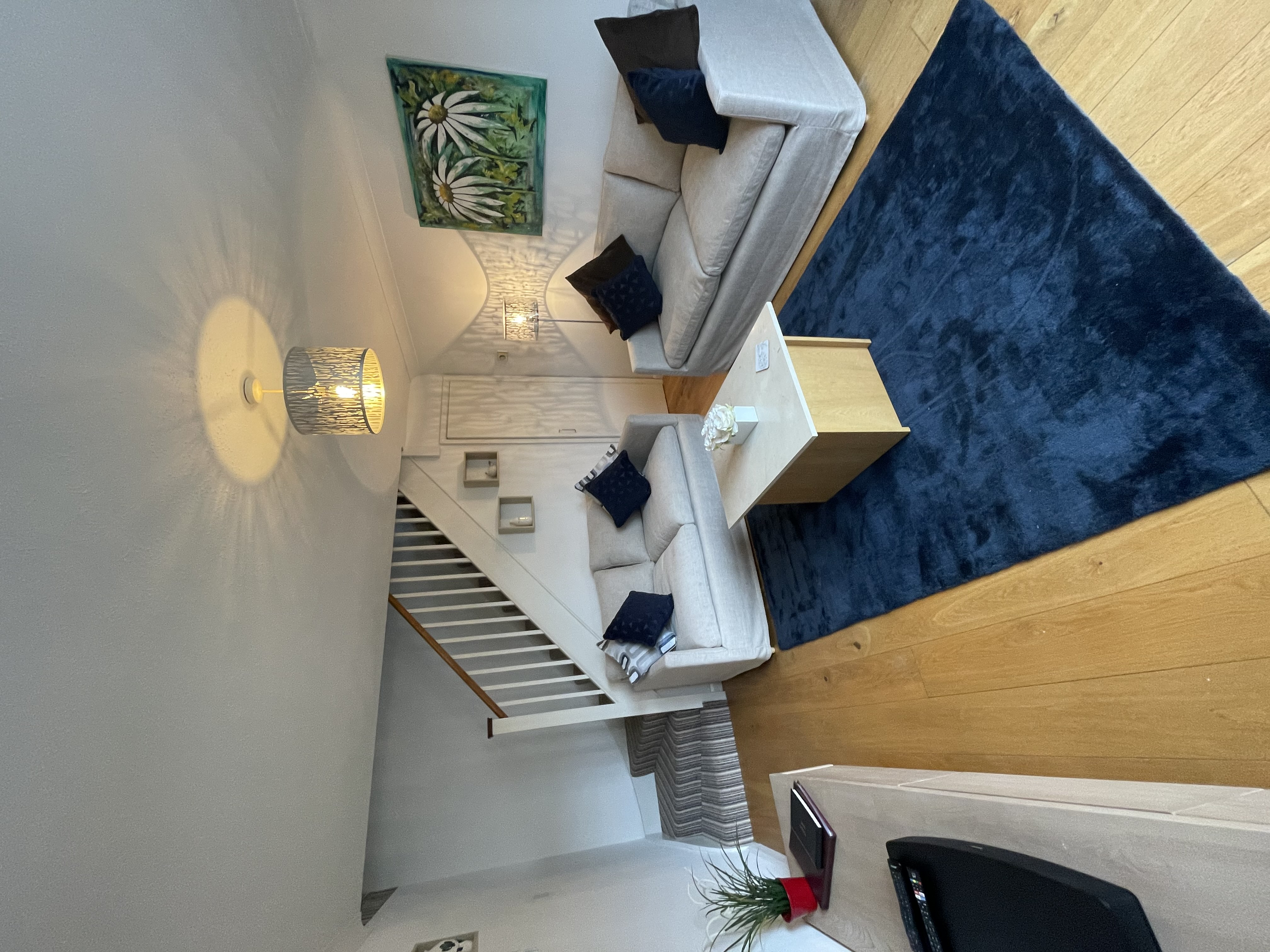 IMG_4673.jpg house lounge