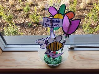 Senior Infants create their own garden