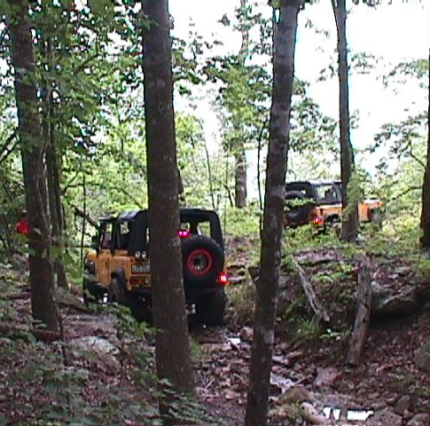 Going through the woods...  Dan Nutkis was a trail leader for Level V (we believe all trucks were equipped with F & R lockers)