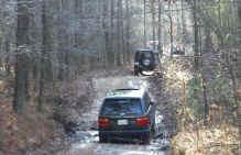 rr_in_the_woods.jpg