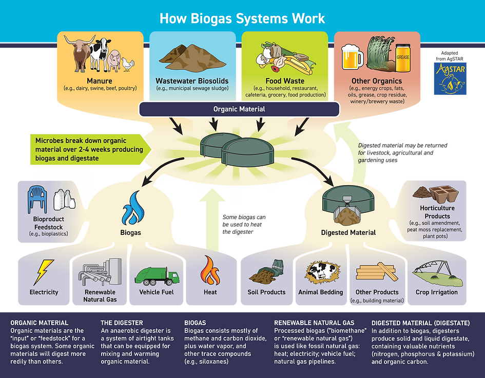 How Biogas Sys Works.png