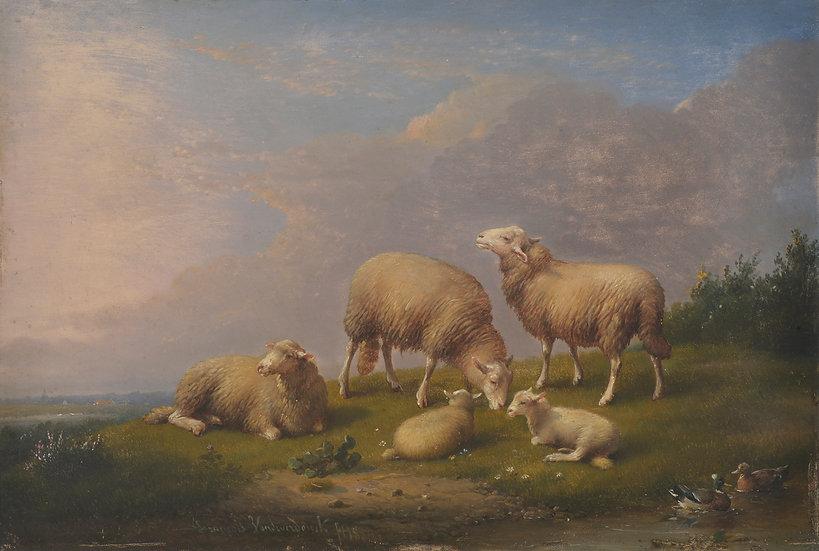 Frans Van Severdonck 1b.jpg