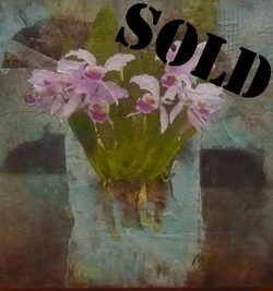 Orchids_SOLD