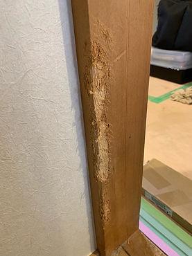 広範囲でも可能、木材リペア