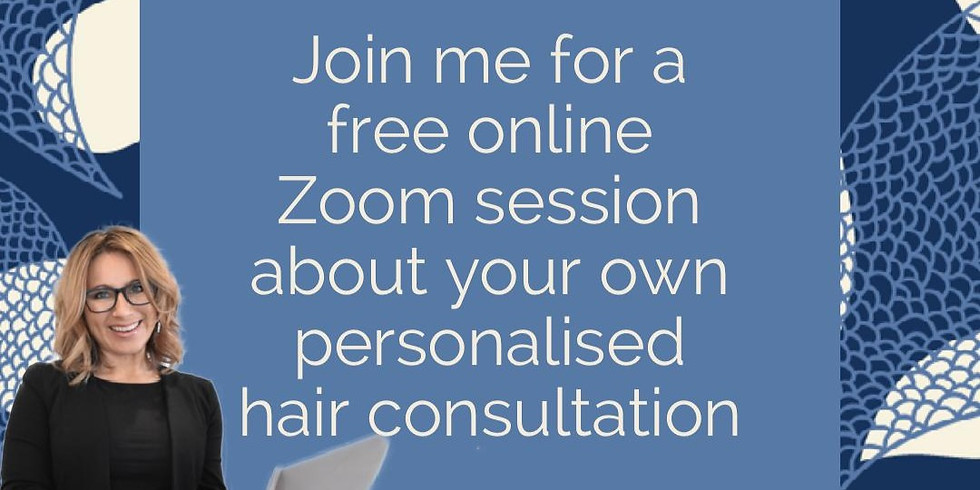 Online consultation info session