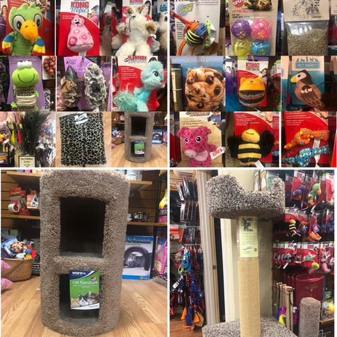 Cat Toys and Cat Trees
