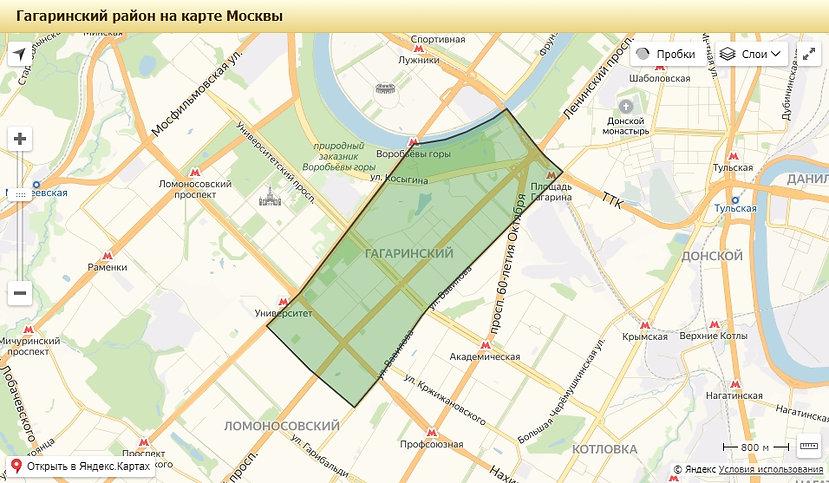 Гагаринский.jpg