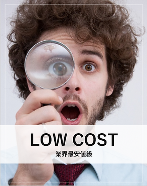 LOWCOST.png