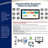 IMP brochure.jpg