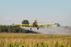 Crop duster.jpg