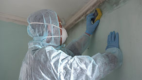 Removing Mold and Mildew. A Man Cleaning