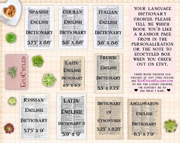 Language-Dictionaries-Choices-may-2020.j