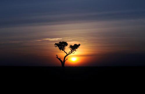 sunset 3 ct copy.jpg