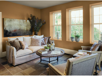 Benjamin Moore: Aura Paint Ideal for the Home