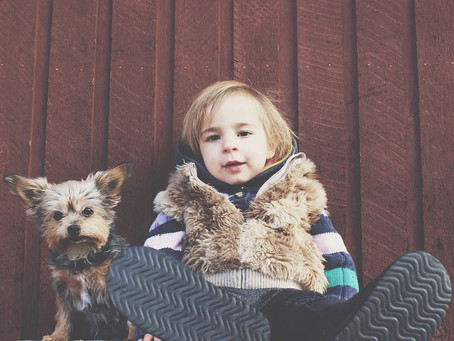 Safety: 5 Tips to Keep Your Kids Safe Around Dogs