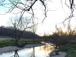 The Story of Shamba Creek Farm (Part 1)
