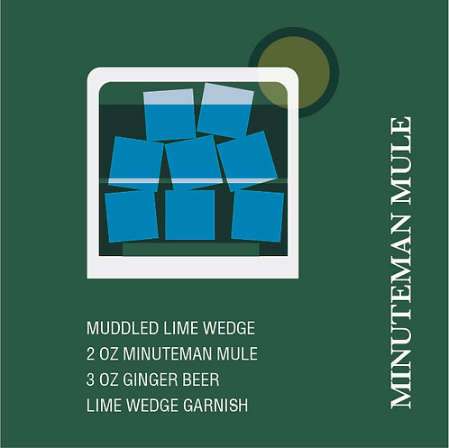 Minuteman (Moscow) Mule Homeschool Cocktail Kit
