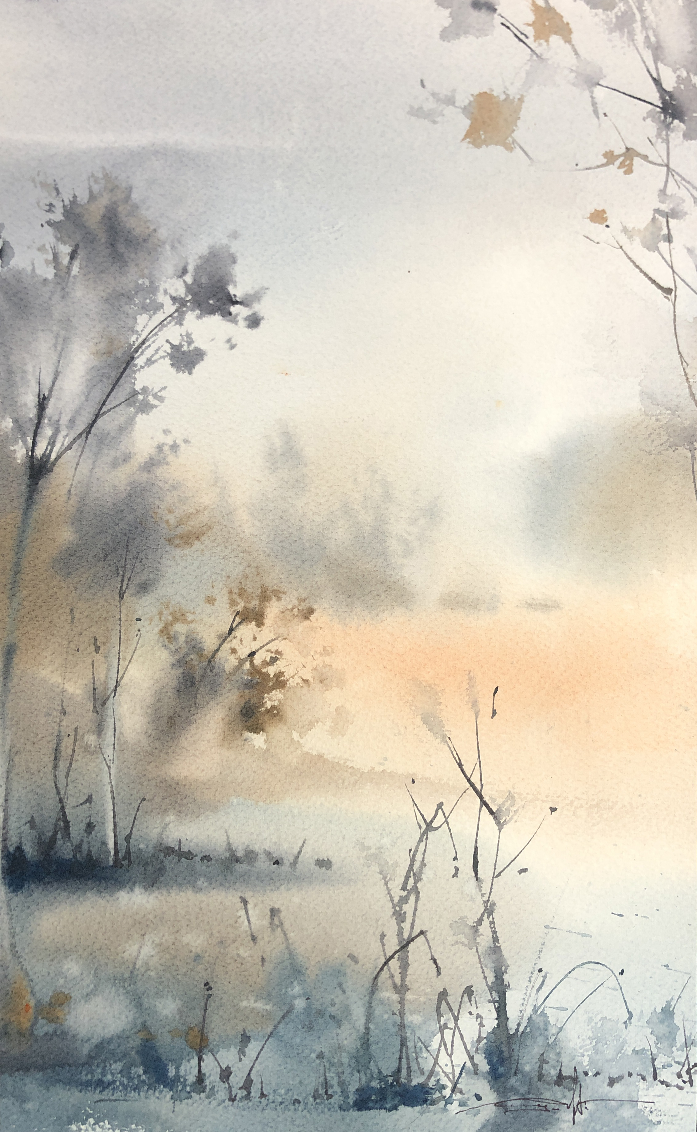 Mist Morning 2