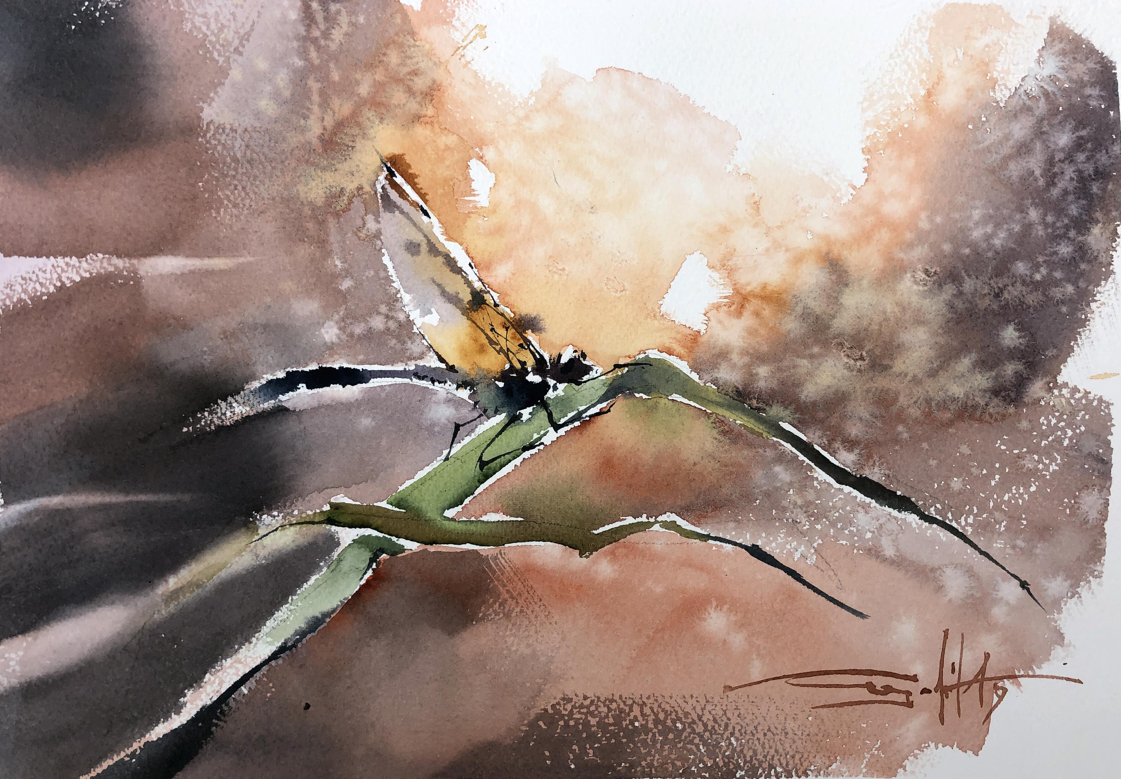 #28 Dragonfly
