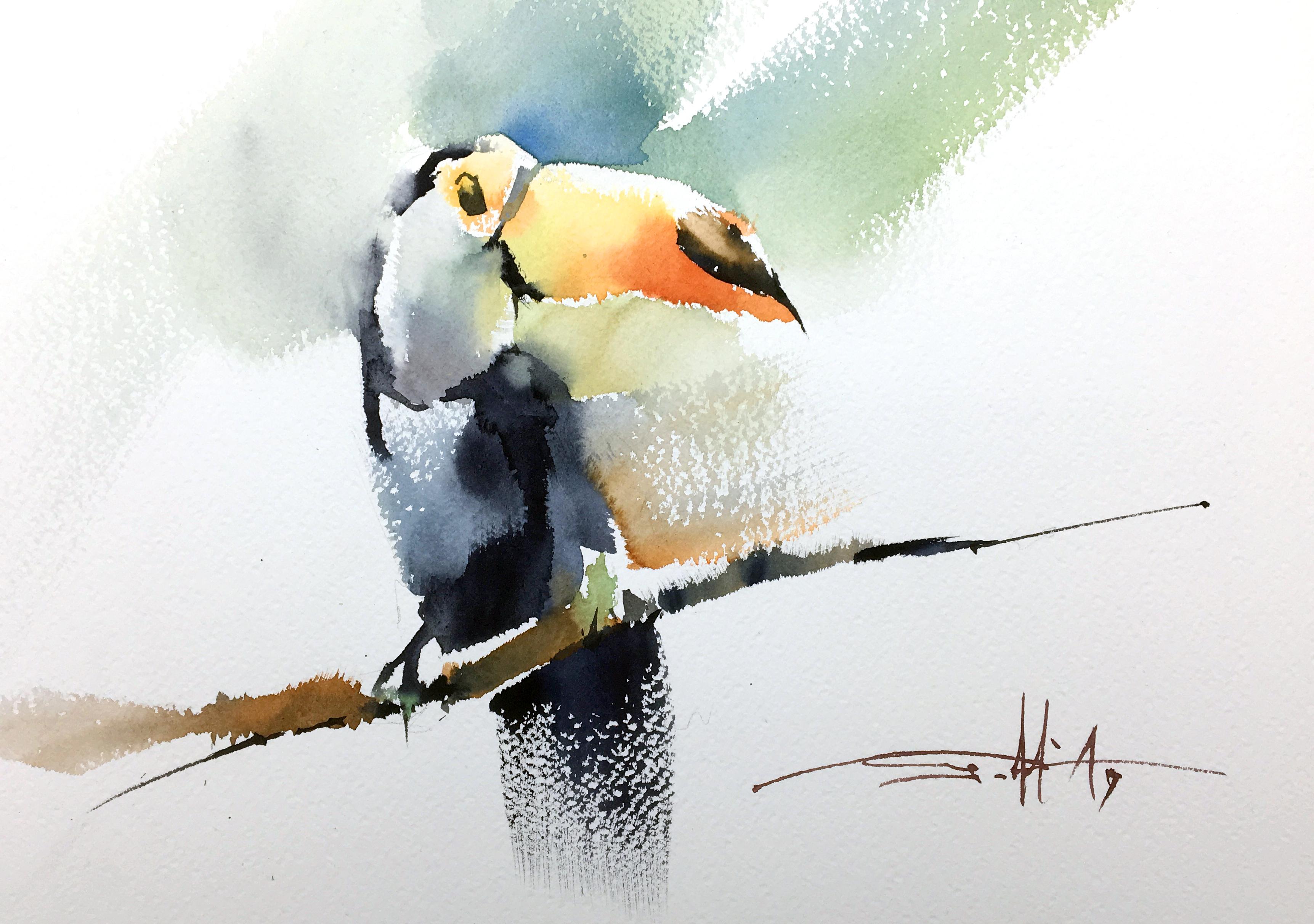 #22 Toucan