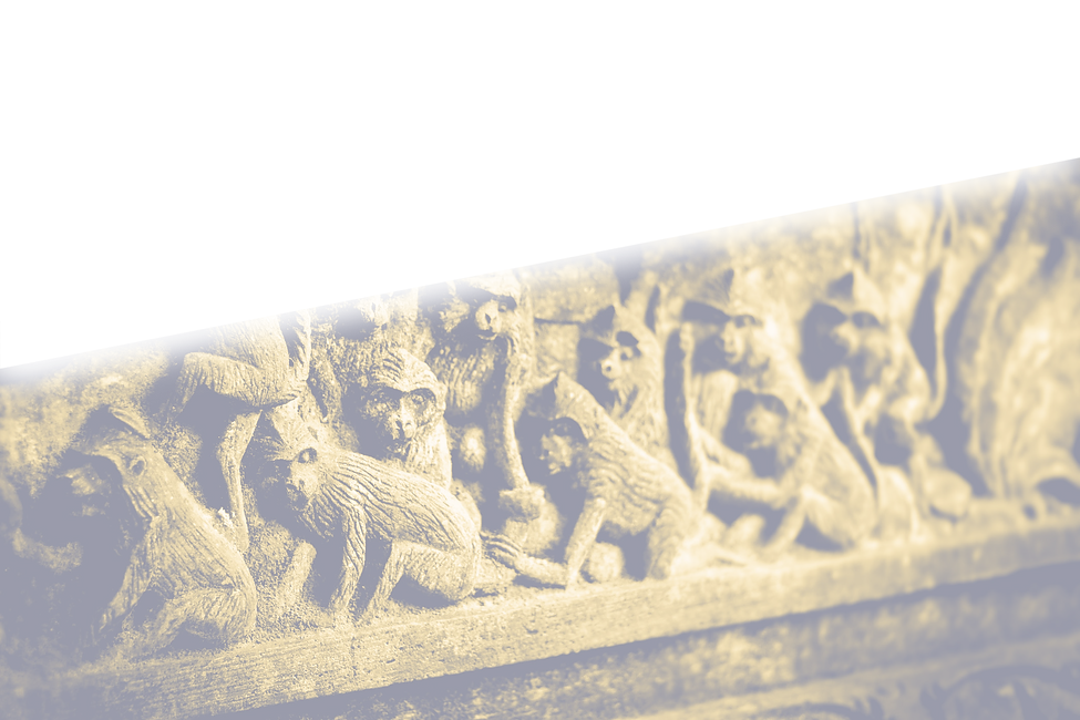 monkey relief copy.png