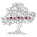 NORWOOD TreewithLogotypeon Top .jpg