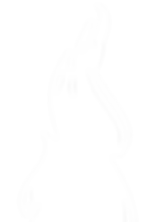 vizazi-flame-images-WHITE-LG.png