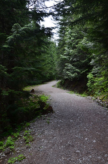Squamish counselling services