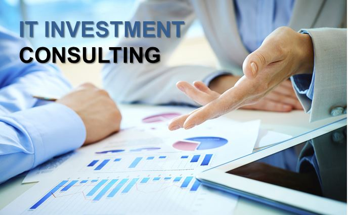 IT Investment Consulting2