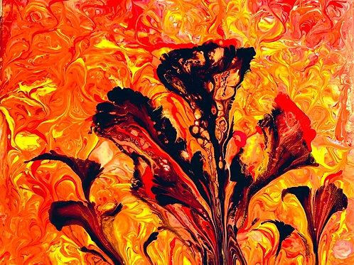 Lava Lilies