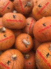 pumpkinphotoPIC.jpg
