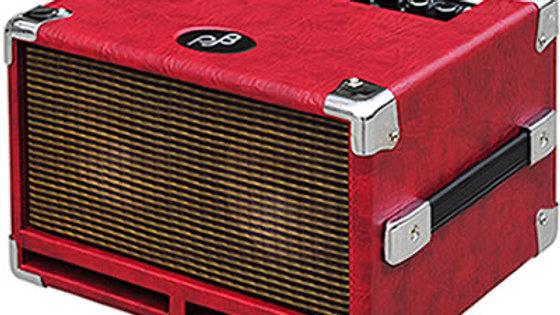 PJB BG-100 Bass Practice Amp