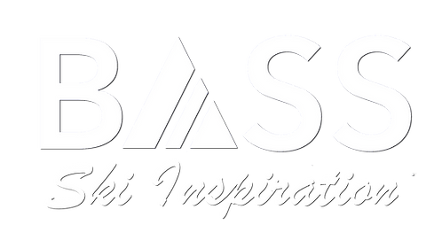BASS Logo A3 shadow.png
