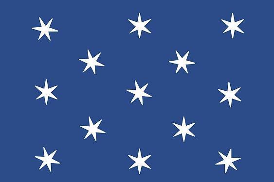 washington flag.jpg