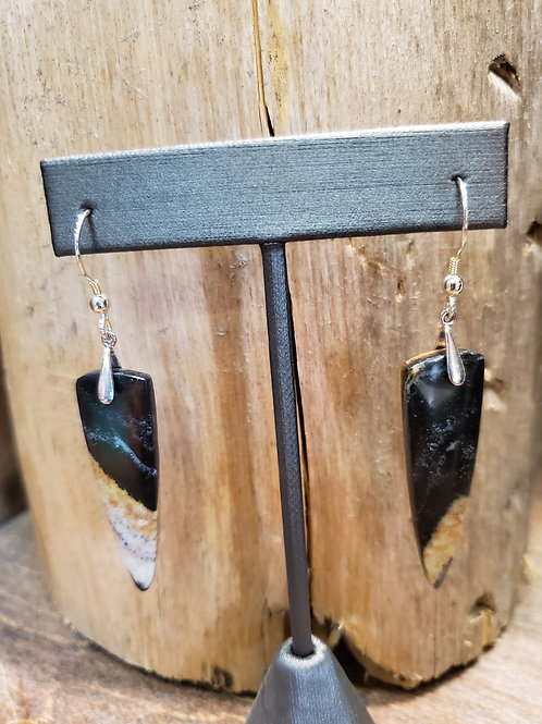 Petrified Palm Wood Earrings