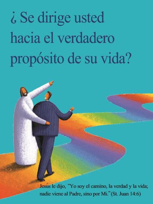 Gospel Booklet (SPANISH)