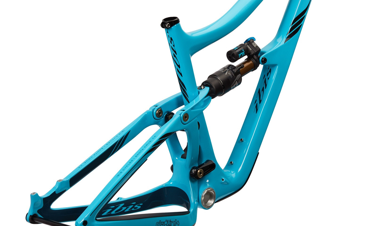ripmo2-blue-back-202020.jpg