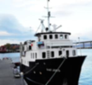 ms-aafjord-hel_lowres.png