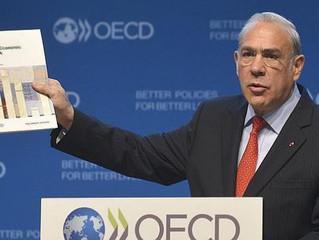Recomienda Secretario de la OCDE enfocar producción a acero con mayor valor agregado