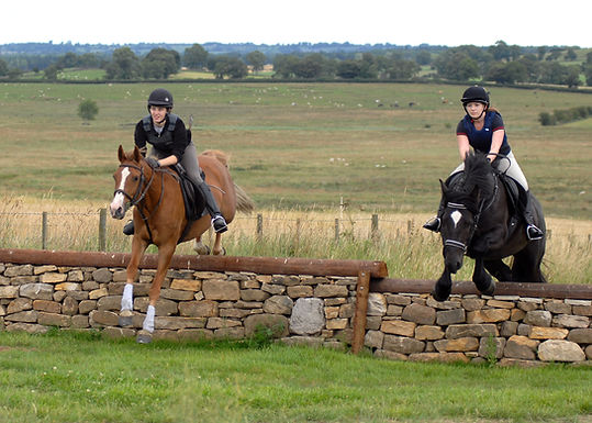 XC Schooling & Showjumping results